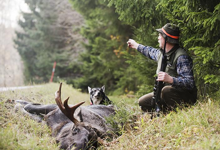 TJuren kom ut där borta, säger Åke och pekar längs med vägen.