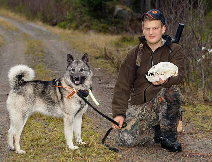 Att vara björnjägare eller icke, det är ingen fråga för Erik som satsar det mesta av sin lediga tid på hösten till att jaga björn med sina björnhundar, här tillsammans med Birk som han sköt sin första björn efter.
