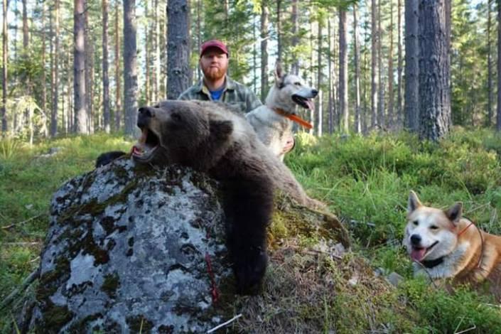 Andreas Hammarlund sköt denna björn idag.