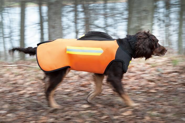 Dogtech Euro 2015 Aaron001