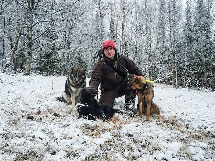 Lyckan höll i sig för Robert, dagen efter sköts det ännu en järv för Roberts hundar.