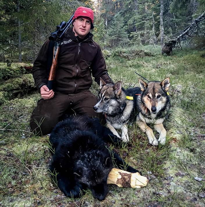 Urak och Frisco, far och son, två rutinerade rovdjurshundar.