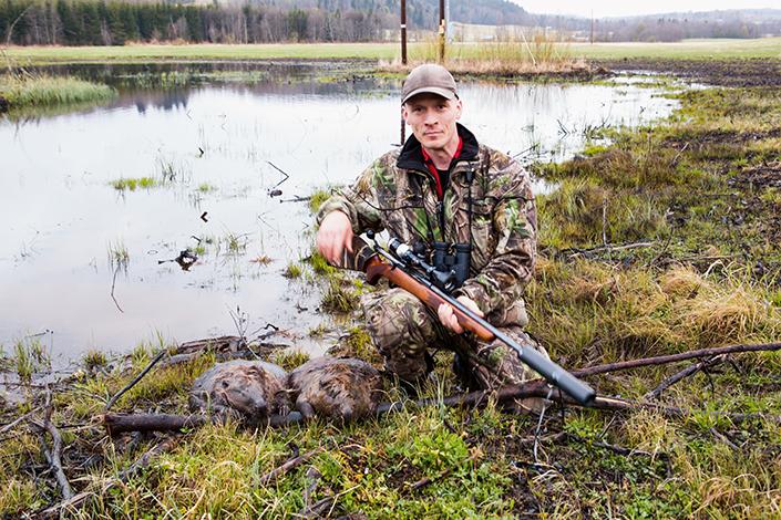 En kort morgonjakt ger två bävrar. Våren kan vara en intensiv jaktperiod om man har rätt vilt i markerna.