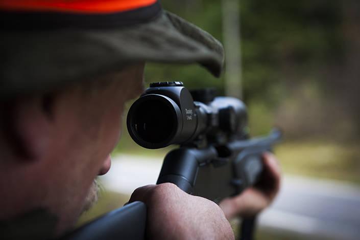 En jägare avlossade i helgen skott mot en varg för att freda sin älghund. Arkivbild: Per Jonson
