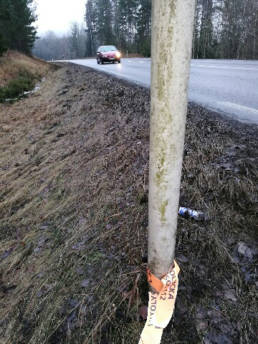 Olycksplatsen var utmärkt med viltremsa och en trasig  backspegel vittnade om krocken med rådjuret. Foto: Privat.