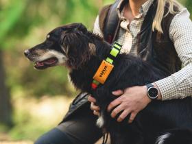 Pejlbranschen presenterar mycket nytt inför höstens jakt. Bland annat kommer WeHunt med ett helt nytt pejlhalsband med spännande funktioner.