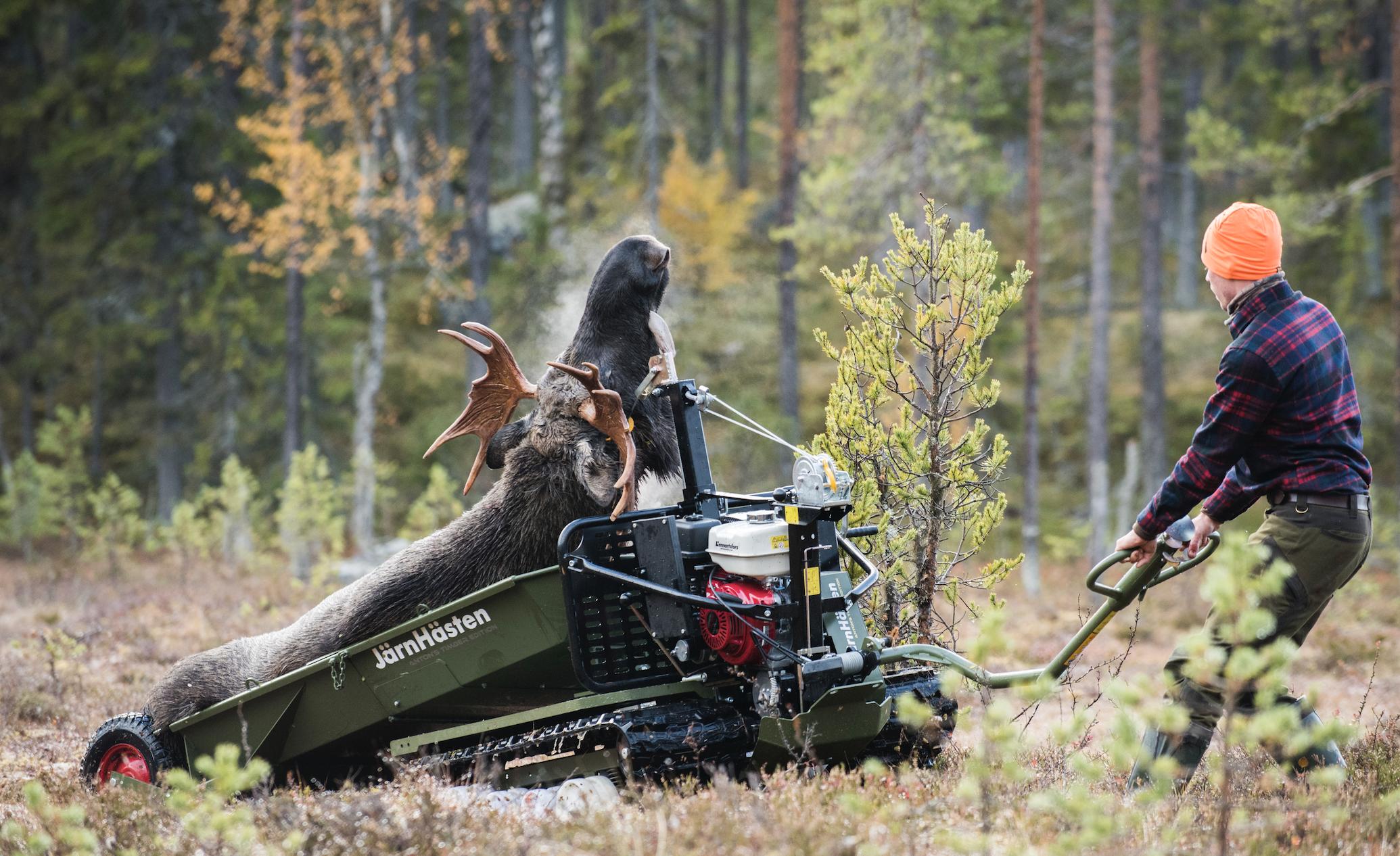 Järnhästen Flex under test på Jaktjournalens älgjakt i Ströms Vattudal. Foto: Per Jonson