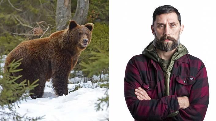 """""""Licensjakten är det verktyg länsstyrelserna ska använda för att förvalta björnstammen. Skyddsjakt ska användas för att ta bort skadegörande individer."""" Foto: Per Jonson/Getty Images"""