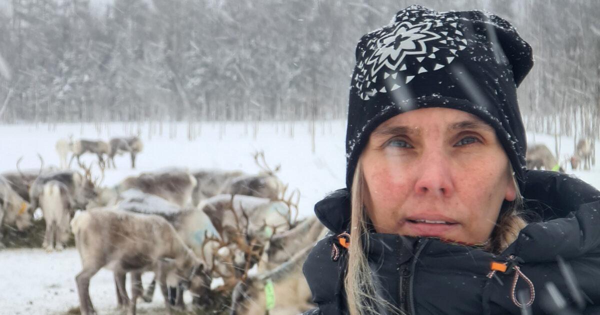 www.jaktjournalen.se